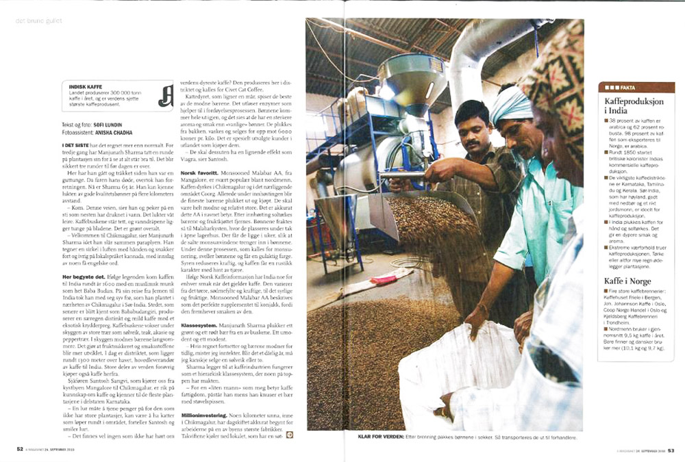India´s coffee farmers. Published in Aftenposten