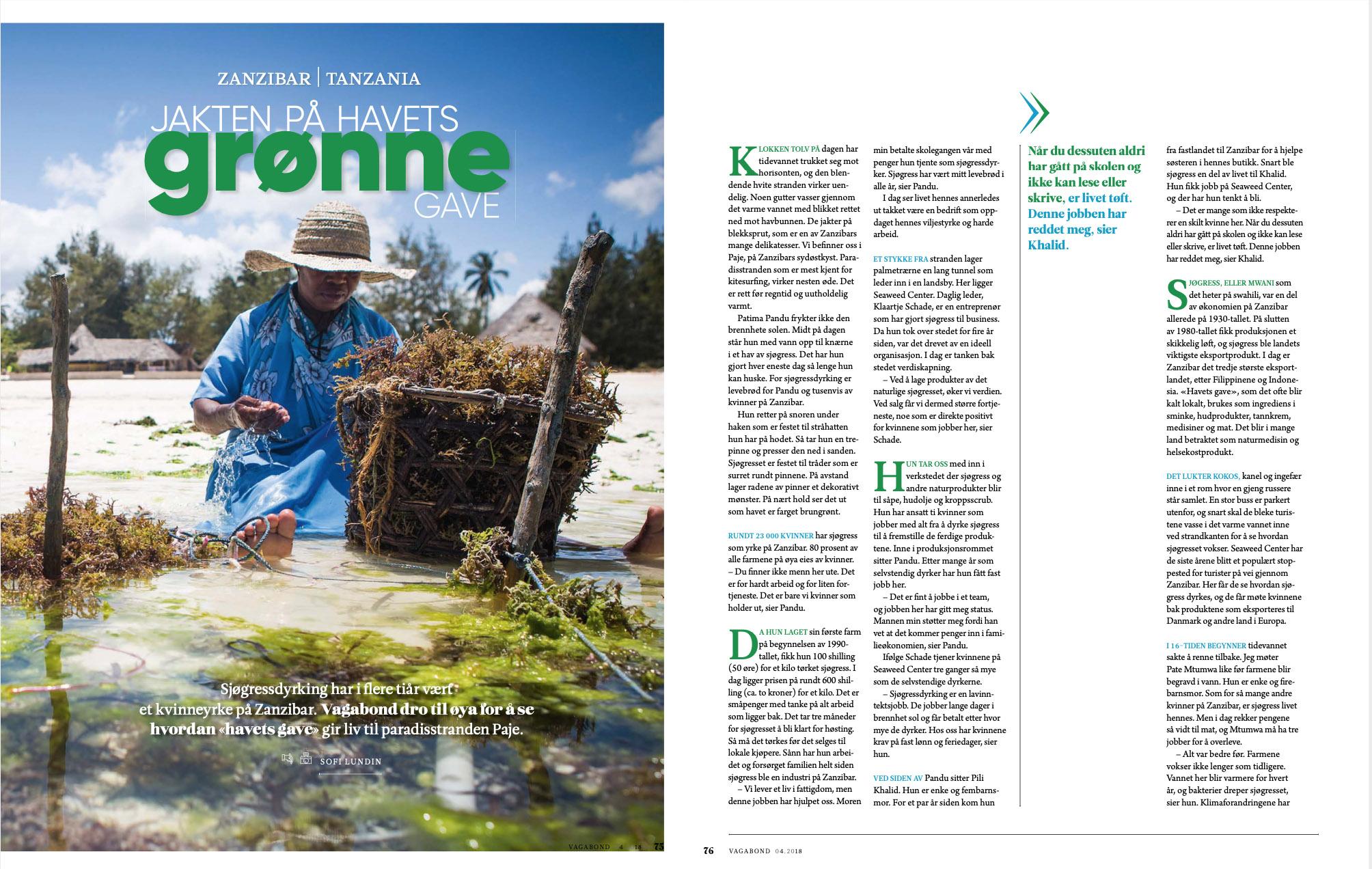 Story about Zanzibar´s seaweed farmers